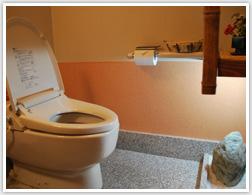和をイメージした小さな石の庭付きトイレです。